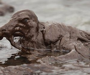 An oil-soaked bird on the Louisiana coast (AP)