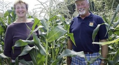 After 378 years, a family farm goes on the block