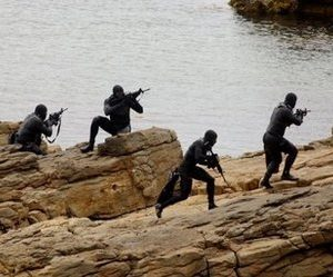 Navy SEALS in training exercise (AFP)