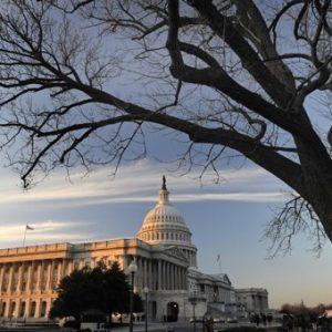 (AP Photo/Cliff Owen, File)