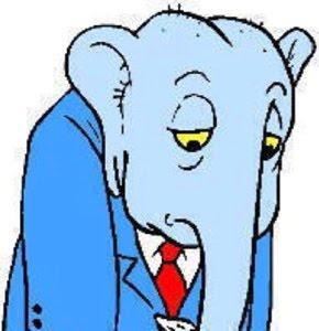 012212elephant
