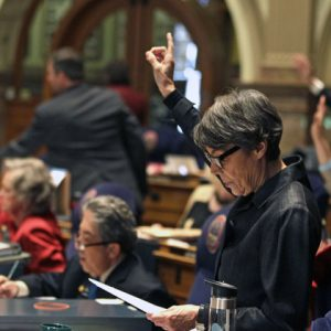Colorado State Senator Lucia Guzman, D-Denver, and her colleagues, vote yes on one of several gun control bills before the Colorado Legislature, at the State Capitol, in Denver, Monday March 11, 2013. Colorado Democrats are on the cusp of advancing gun-control proposals in a state balancing a history of heartbreaking shootings with a Western heritage where gun ownership is treasured by many. (AP Photo/Brennan Linsley)
