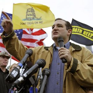 Sen. Ted Cruz, R-Texas. (AP Photo/Alex Brandon)