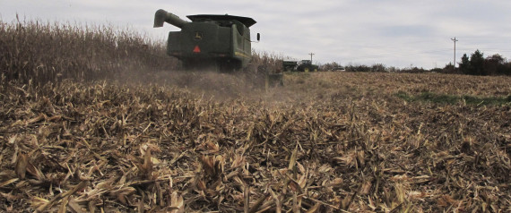 Story on ethanol draws sharp response from industry