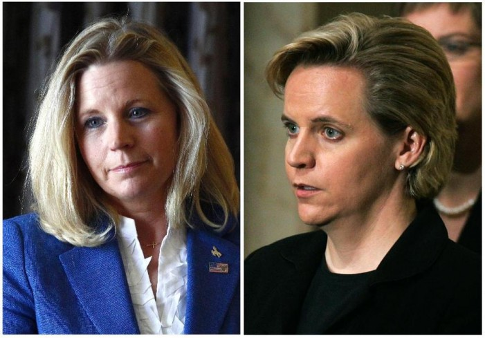 Cheney sisters in public fight over gay marriage