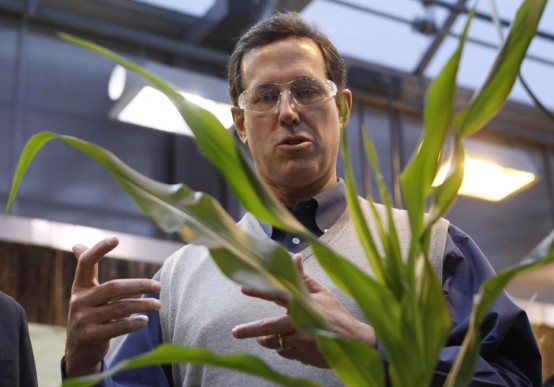 Republican presidential candidate, and former Pennsylvania Sen. Rick Santorum looks at corn plants during a tour of Pioneer Hi-Bred Carver Center in Johnston, Iowa. (AP Photo/Chris Carlson)
