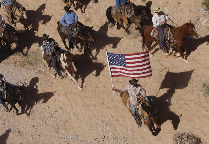 Feds halt seizure of Nevada rancher's cattle