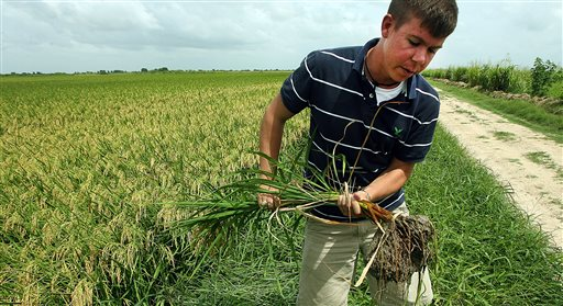 Farmers, energy and travel could benefit from Cuba thaw