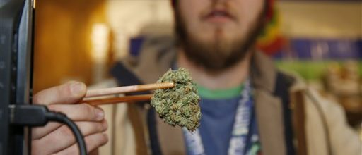 Pot use on the rise in Colorado