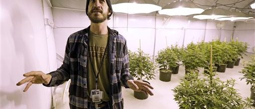 Washington finds itself going to pot