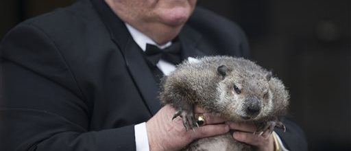Groundhog predicts early spring