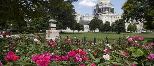 Sept. 11 bill brings veto threat