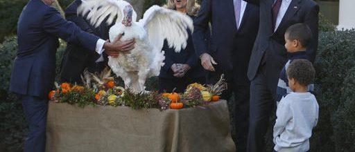Obama issues his last turkey pardon