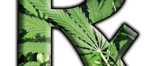 Maryland passes medical marijuana bill