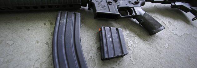 Loud minorities often prevail in gun debate